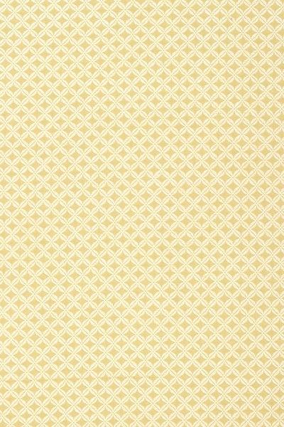 Ткань Thibaut W98673