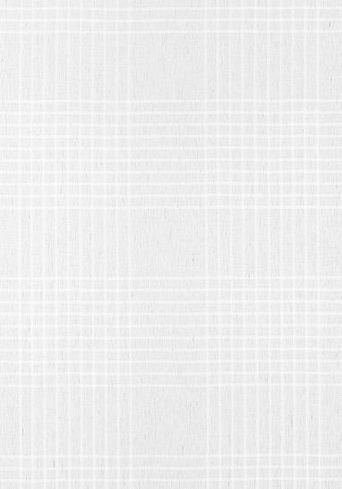 Ткань Thibaut FWW7107
