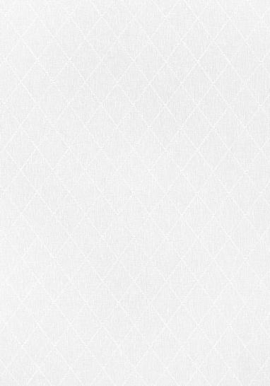 Ткань Thibaut FWW7104