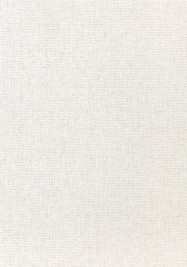 Ткань Thibaut FWW7115